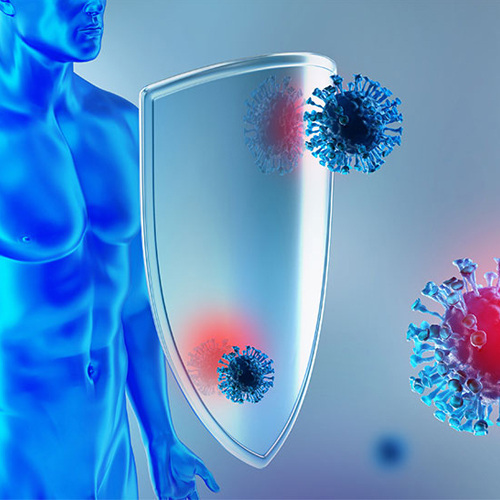your-immune-system